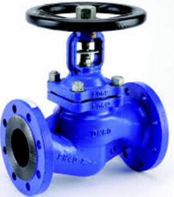 Valve Bellky Globe TPF304L CFO BODY Valtr TRIM, Gear Operated Globe Valve